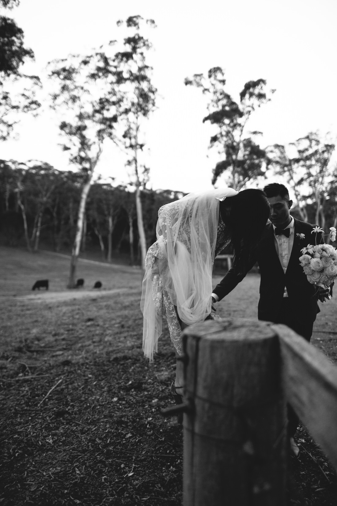 Bride climbing fence in Bowral in Southern Highlands